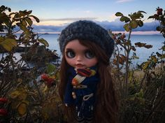What a beautiful place #blythedoll #customblythe #scotland