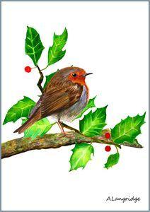 Red Robin Bird on Holly branch