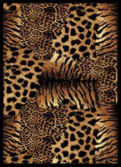 1000 Images About Animal Print On Pinterest Animals