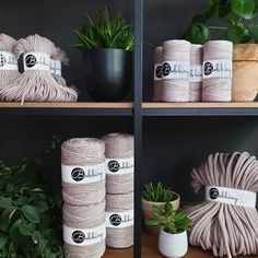 We're crazy about Pearl 💫It's a great alternative to Natural or Beige when you're looking for a neutral color 😉 And do you see how beautifully it looks surrounded by plants! Cotton Cord, Alternative, Macrame Cord, Beige, Neutral Colors, Crochet, Planter Pots, Etsy, Pearls