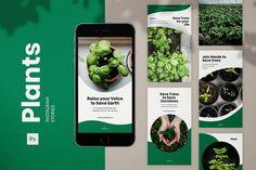 Instagram Design, Instagram Feed, Instagram Story, Green Web, Go Green, Website Slider, Layout Design, Web Design, Graphic Design