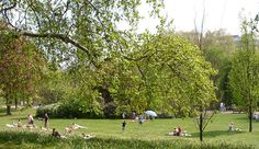 Have a #picnic with the #kids in one of London's Royal Parks! http://www.nyhabitat.com/blog/2013/04/01/visit-london-kids-family/