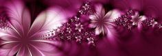 LiveCrew | bloemen en tubes bloemen