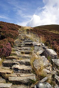A man-made stairway in the Scottish highlands.