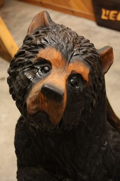 Chainsaw Carved curious bear by Shawn Corbin of Chippewa Valley Chainsaw Carver.