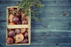 New free stock photo of vegetables harvest fresh