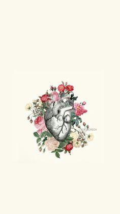 Meu eu Screen Wallpaper, Cool Wallpaper, Wallpaper Backgrounds, Cellphone Wallpaper, Iphone Wallpaper, Coeur Tattoo, Medical Art, Anatomy Art, Heart Art