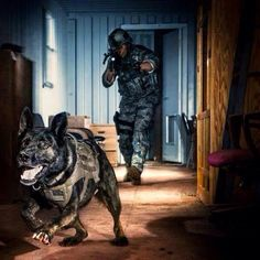 """""""There is no hunting like the hunting of man, and those who have hunted armed men long enough and liked it, never care for anything else thereafter"""". –Ernest Hemingway from Military Working Dogs on..."""