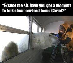 Excuse me sir - polar bear meme