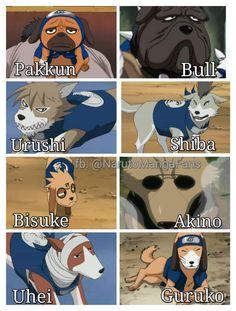 kakashi he has 8 sogs Naruto Uzumaki Shippuden, Naruto Shippuden Sasuke, Guren Naruto, Anime Naruto, Susanoo Kakashi, Kakashi Sensei, Naruto Sasuke Sakura, Naruto Comic, Wallpaper Naruto Shippuden