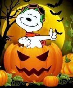 Reading Halloween picture books is a fun way to relax, connect with your kids, and celebrate the holiday. Here are 19 Halloween books for kids to add to your reading list this October. Snoopy Halloween, Charlie Brown Halloween, Halloween Tags, Happy Halloween Video, Happy Halloween Quotes, Feliz Halloween, Charlie Brown And Snoopy, Halloween Pictures, Holidays Halloween
