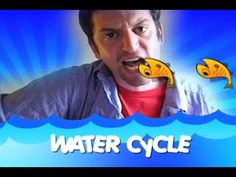 The Water Cycle Song-Video Kindergarten Science, Elementary Science, Middle School Science, Science Classroom, Teaching Science, Science Education, Physical Science, Science Videos, Science Resources