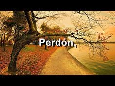 ▶ Camila - Perdón - Elypse - Letra - HD - YouTube