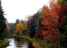 31 Fall In The Adirondacks Ideas Adirondacks Places To See Fall