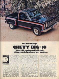1977 Chevy Big 10 Stepside with 454 engine