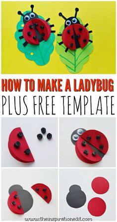Today we have a super easy ladybug craft which is a brilliant preschool activity idea for little ones . This paper ladybug craft is a great spring themed art idea and a fabulous idea for developing fine motor skills. Alya Ladybug, Ladybug Art, Ladybug Crafts, Summer Crafts For Kids, Paper Crafts For Kids, Fun Crafts, Art For Kids, Summer Kids, Spring Arts And Crafts