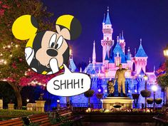 Disney World and Disneyland are said to be the happiest places on earth. You might think that since you've seen every Disney movie that you know everything about these famous theme parks, but that's probably not the case.