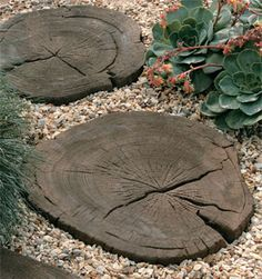 More great faux-bois concrete. This time beautiful, dark brown stepping stones.