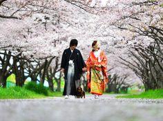 結婚式前撮り 大分県大分市新栄町4-10 シュシュウェディング 097-529-5666 http://any-ent.jp/chouchou/