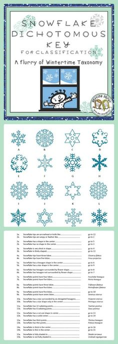Winter dichotomous key practice - identify snowflakes for holiday fun in life science and biology. Great for your classification unit.