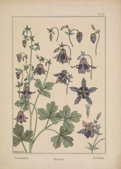 Tesori d'archivio: un piccolo capolavoro dell'Art Nouveau - Frizzifrizzi