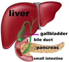 Excellent article on weight loss after gallbladder surgery and what to do to help.