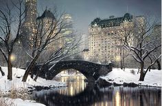 rod chase . NYC.Central Park. Bow Bridge.Winter
