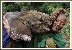 Lempaute kisses Amos #elephants #sheldrickwildlifetrust