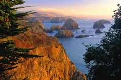 Google Image Result for http://grapplersretreat.com/yahoo_site_admin1/assets/images/mendocino.34895146_std.jpg