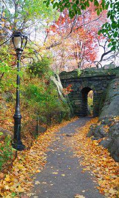 Stone bridge in New York City Central park. Elf scene stop for our buddy the elf trip! Stock Photo - Stone bridge in Autumn in New York City Central park. Places To Travel, Places To Go, Travel Destinations, New York City Central Park, Autumn In New York, I Love Nyc, Beautiful Places, Scenery, Around The Worlds