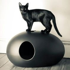 The Cat Litter and/or Shelter Box that is aesthetic and functional. The unique egg-shaped design commands attention, turning what is usually an eye-sore into a piece of art! Bright Pop Art colors incl