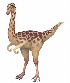 The Gallimimus Dinosaur Wall Sticker is very easy to install and comes with simple instructions. $89.99 - same day shipping! Shop www.DinosaurToysSuperstore.com