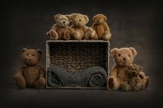 Teddy bear cubby hiding place; newborn up to 3 months Commission Sunnyvale California based photographer, and choose to receive this beautiful digital art featuring your own child. Email me for current prices. #newbornphotography #babyphotos #commission #digitalbackground #bayareaphotographer #bayareababy #siliconvalley #santaclaracounty #sunnyvale #cupertino #fremont #milpitas #sanjose #mountainviewcalifornia #menlopark #sfbay #bayarea #California #jessicaesplinphoto