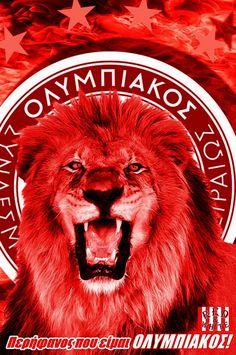 Red Star Belgrade, Savage, Lion, Stars, Alfa Romeo, Animals, Football Jerseys, Tatoo, Greece
