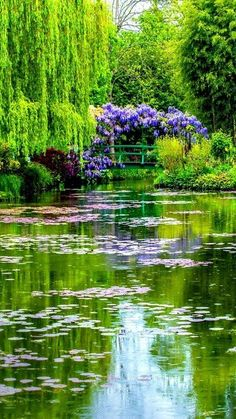 Water Pond, Water Garden, Claude Monet, Artist Monet, Garden Of Earthly Delights, Garden Park, Spring Landscape, Lily Pond, Water Reflections