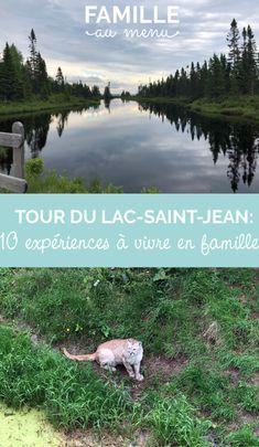 Les meilleures activités à faire avec les enfants autour du Lac Saint-Jean, en dix expériences incontournables... #Quebec #SagLac #Canada #activiteenfamille Lac Saint Jean, Fjord, Canada, Glamping, Mountains, Road Trips, Annie, Menu, Travel