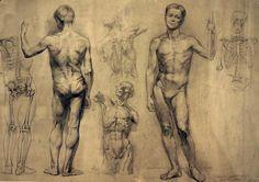 Описание: http://www.practicum.org/images/stories/_TEORIA/Anatomia/Anatom/anatom_008.JPG