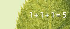 Visszereseknek ismerni kell ezt a természeti törvényt! Herbs, Herb, Medicinal Plants