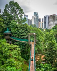 KL Forest Eco Park in Kuala Lumpur, Malaysia! Find fun free things to do in KL on go4theglobe.com!