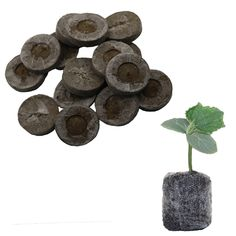 Nursery Soil Block Garden Flowers Planting The Soil Block Plant Seedlings Peat Cultivate Block Seed Migration Tools. Category: Home & Garden. Product ID: