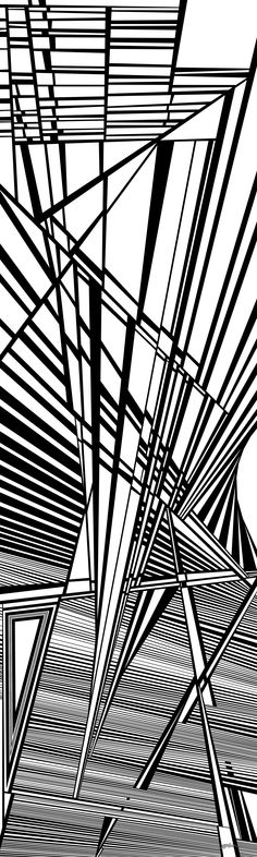 morgenstern - Dynamic black and white optical obsession, organic abstract by Douglas Christian Larsen, homage and tribute to Erin Morgenstern and her magically romantic novel The Night Circus - http://fineartamerica.com/featured/morgenstern-douglas-christian-larsen.html