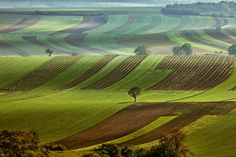 Landscape of Czechia