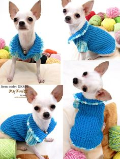 Fancy Dress Homemade Teacup Chihuahua Classic blue DK856