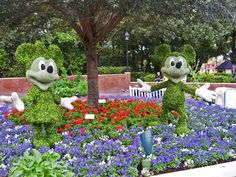 Disney Topiaries | Mickey and Minnie Mouse