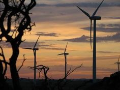 Wind Energy Could Meet Global Demand 20--100 Times Over, New Study Finds - CleanTechnica - ocean currant, waves, solar and wind.....ok let's deploy and move away from oil.