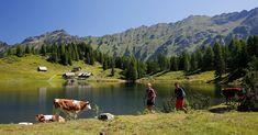Mountains, Nature, Travel, Google, Waterfall, Tourism, Landscape, Summer, Naturaleza