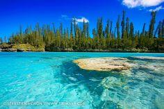 Isle of Pines New Caledonia