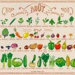 Miam-Miam AOUT Fruits et légumes de saison