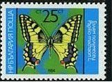 Common Swallowtail (Papillion machaon)