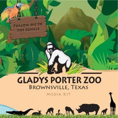 gladys porter zoo brownsville texas more porter zoos places ives ...